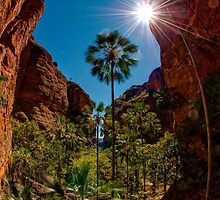 Mini Palms Gorge, Purnululu National Park by Erik Schlogl
