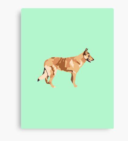Spring Green Collie Canvas Print