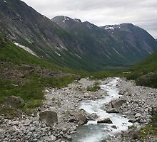 Norway, Isterdalen Valley from the Troll Road  by Grace Johnson