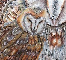 Barn Owl Fantasy by Rachel8125