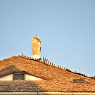 Old Roof with  A Chimney and A Triangular Eye-Like Window by ivDAnu