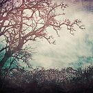 I Like Trees...  - Vintage Grunge Landscape Art  by Denis Marsili - DDTK