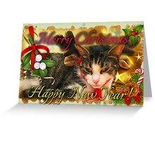 Christmas kitty deer cards Greeting Card