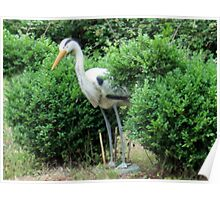 heron in the shrubbery Poster