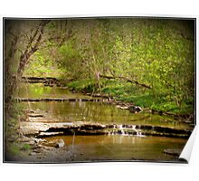 Creek and Autumn Leaves nature photography Poster