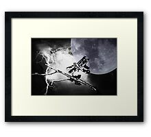 Wonderous Nature Framed Print