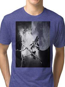 Wonderous Nature Tri-blend T-Shirt