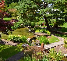 Japanese Garden 4 by Debbie  Maglothin