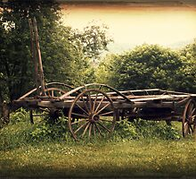 Farm Wagon rustic country decor photography by jemvistaprint
