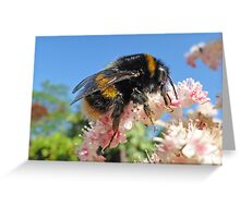 Bee - A Buzzing Thing Greeting Card