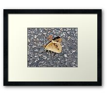 Buffy The Butterfly Framed Print