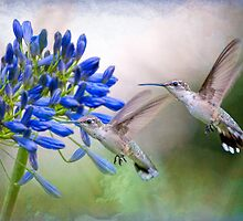 Humming in Two Part Harmony by Bonnie T.  Barry