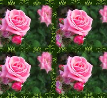 Pink Roses in Anzures 1 2x2 Dark Green Damask by Christopher Johnson