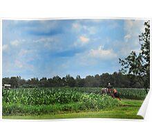 Farm in Ohio Poster
