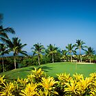 Kona Country Club  by printscapes