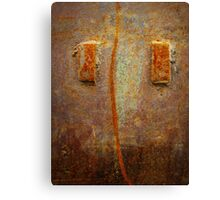Rust 3 Canvas Print