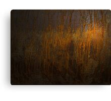 Rust 1 Canvas Print