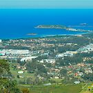 Coffs From Above by Penny Smith