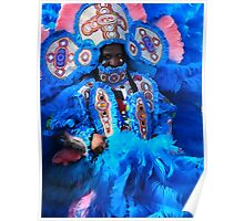 Mardi Gras Indian Big Chief James Poster