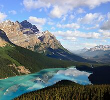 Peyto Lake by Pam Hogg