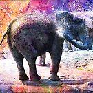 ELEPHANTS by Tammera