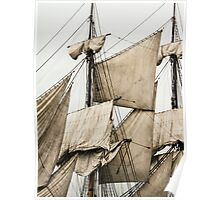 Sails From The Past Poster