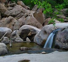 Cherry Creek Cascades by Bill Hendricks