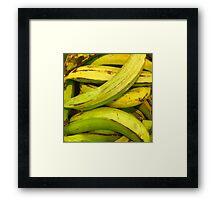 Green Fruit 2 Framed Print