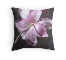 Be Inspired... Throw Pillow