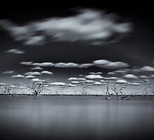 Surreal - Lake Pinaroo, NSW by Malcolm Katon