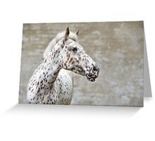 Lovely spots  Greeting Card