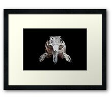 Ophthalmosaurus Framed Print