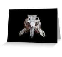 Ophthalmosaurus Greeting Card