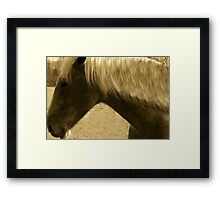 Horse in Sepia brown horse blond mane equine photography Framed Print