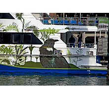 Kiwi Cruise Photographic Print