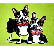 Bostons in Bowties Photographic Print