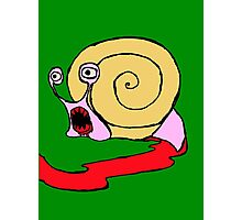 Snail rage Photographic Print