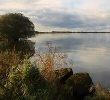 The Lough by Adrian McGlynn