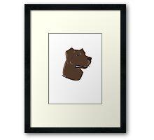 Chocolate Lab Framed Print