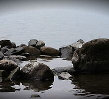 Rock Pool Windermere Lake District by liberthine01