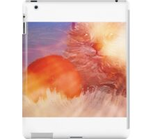 Kitten with Red Ball iPad Case/Skin