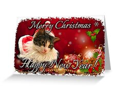 Santa cat Cards Greeting Card