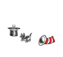 Cat in the Hat & the Magician's Rabbit by Corinna Djaferis