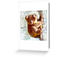 Young Koala on Raymond Island Greeting Card