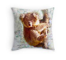 Young Koala on Raymond Island Throw Pillow