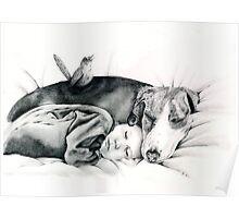 Beagle, Baby & Bird Poster