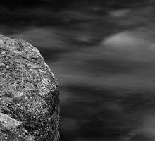 Lyre River No. 1, Olympic Peninsula, Washington, July 2013 by Steve G. Bisig