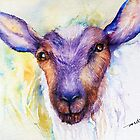 Black Sheep  Watercolor by Arti Chauhan