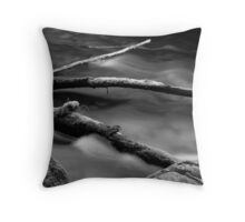 Lyre River No. 3, Olympic Peninsula, Washington, July 2013 Throw Pillow