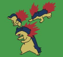 Cyndaquil, Quilava and Typhlosion by Funkymunkey